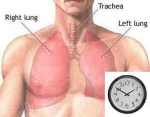 Minute ventilation