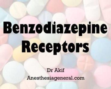 Benzodiazepine receptors